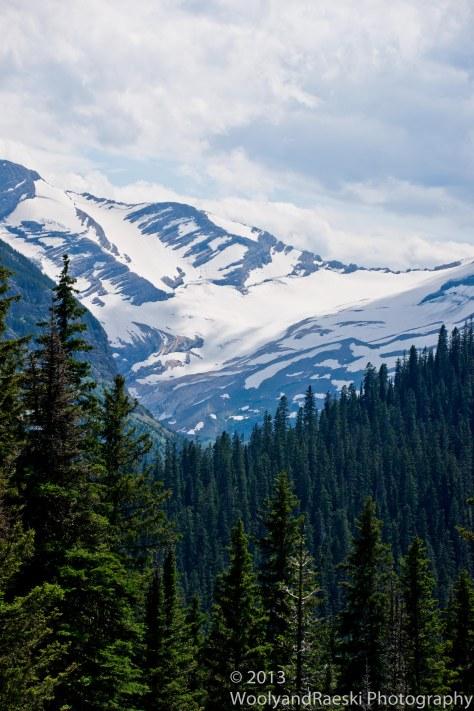 Endangered glaciers