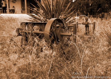 Front yard farm equipment