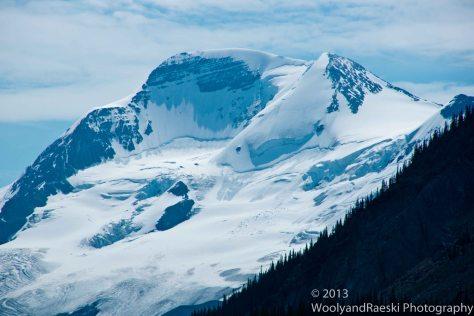 Shark Glacier