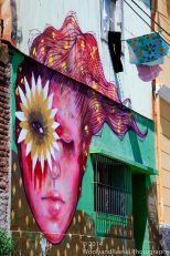 Valparaiso 'Ladies'