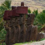 Palms sway in the background as if to cool the Moai.