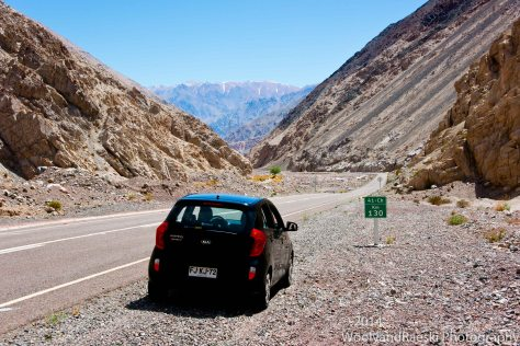 Sometimes the most green in the Atacama is found on the road signs.