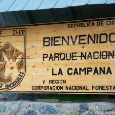 La Campana Welcome