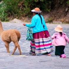 A mother with child in tow and llama leading the way to the town square.